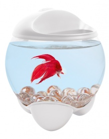Аквариум Tetra Betta Bubble  1,8L белый