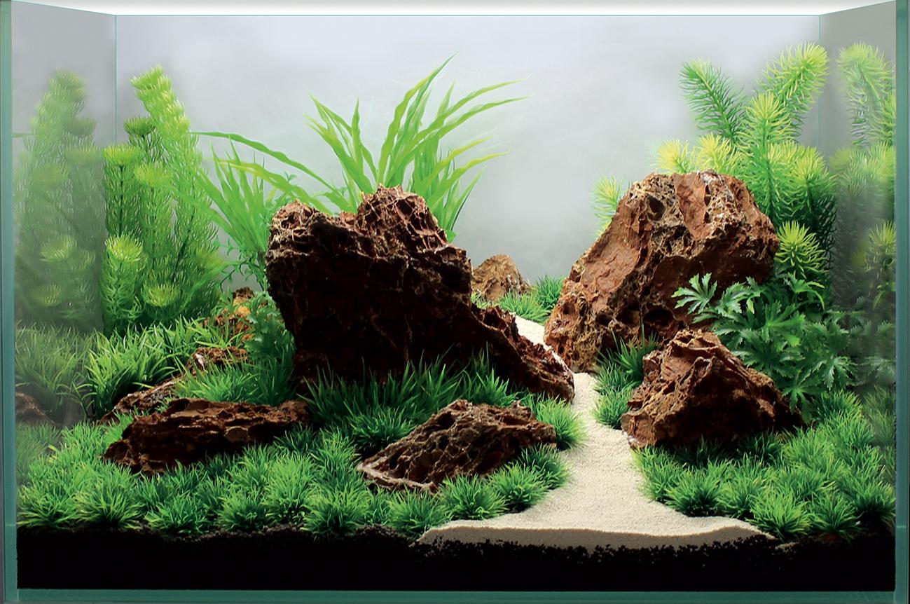 площадке картинки из грунта для аквариума прошел московском элитном