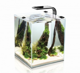 Нано-аквариум Aquael Shrimp Set SMARTPLANT 10 белый